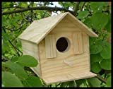 Hammond toys Wood Bird House Kit Complete with Nails