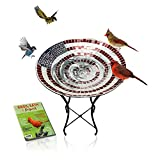 Glass Birdbath with Stand - 24 Inch Mosaic American Flag Pattern | Glass Bowl with Metal Stand |...