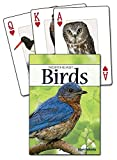 Birds of the Northeast Playing Cards (Nature's Wild Cards)
