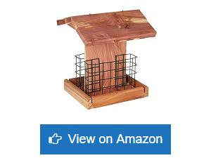 Homes-Garden-Suet-Wild-Bird-Feeder