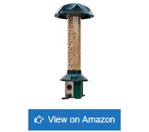 Roamwild-PestOff-Squirrel-Proof-Wild-Bird-Feeder
