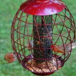 spinning squirrel proof bird feeders