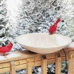 best-heated-bird-bath