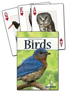 christmas gifts for bird lovers